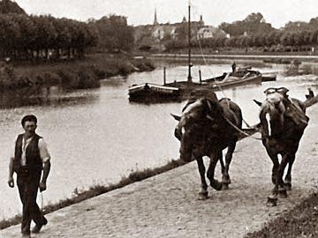 Treideln auf dem Finowkanal